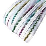Schnoschi 6 m endlos Reißverschluss weiß mit Regenbogeneffekt 5mm Laufschiene + 15 Zipper, Spiralreißverschluss