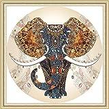 Maysurban Stickerei Set Kreuzstich Starter Kit Vorgezeichnet zum Sticken für Anfänger Stickset zum Selbersticken Cross Stitch Elefant 50x50cm